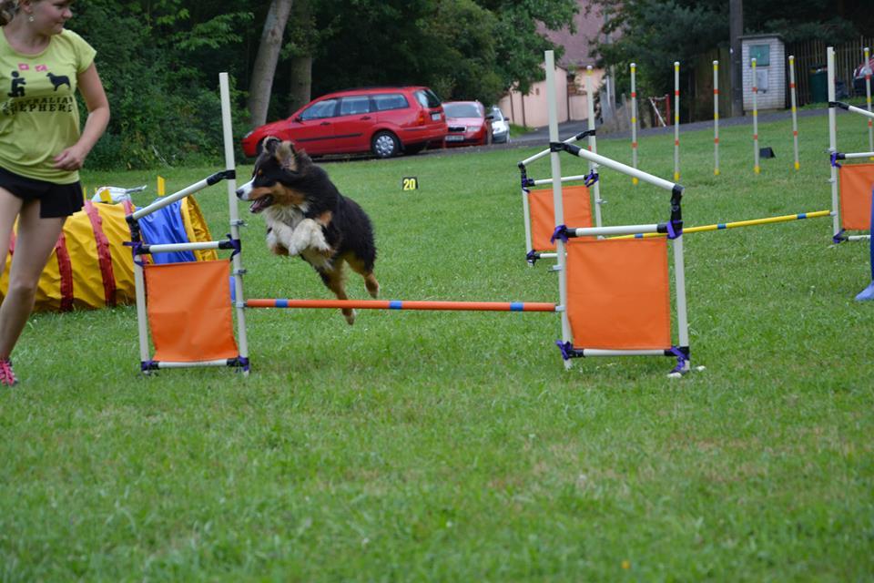 A agility1